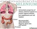 Selenium - antioxidant