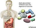 Alpha-glucosidase inhibitors