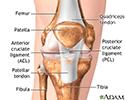Anterior cruciate ligament repair - Series